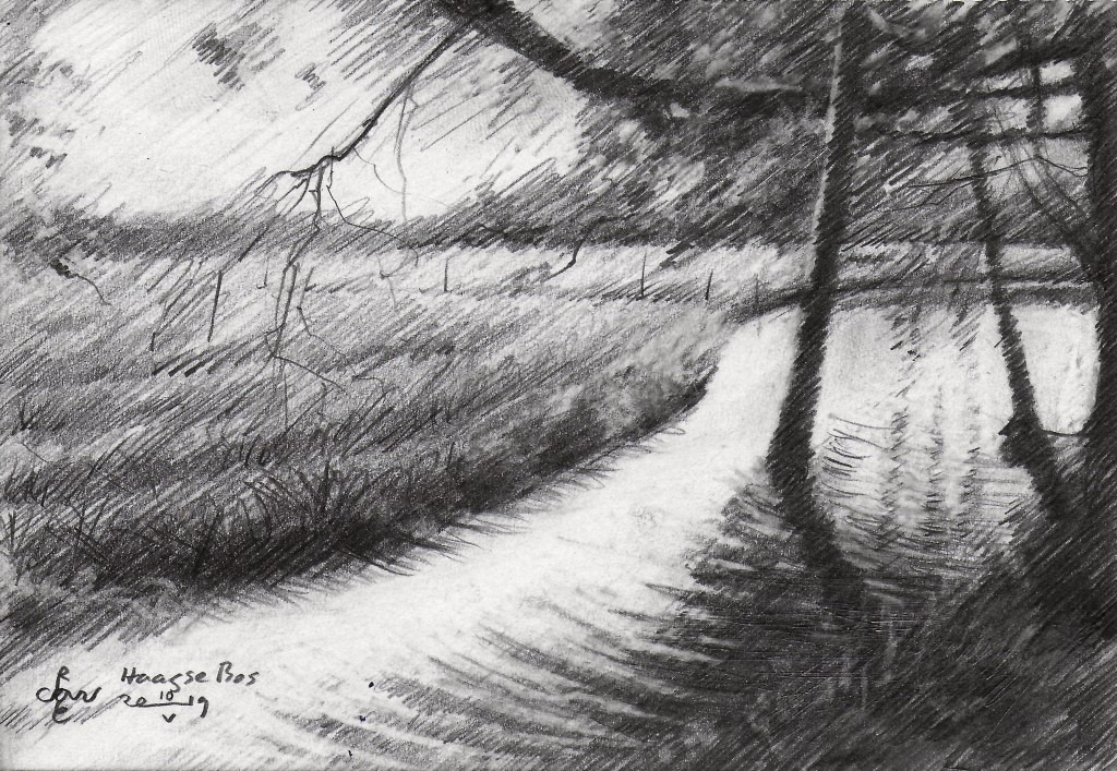 impressionistic landscape graphite pencil drawing
