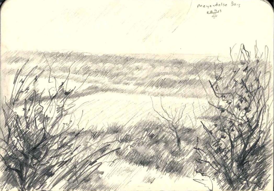 impressionistic landscape graphite pencil sketch