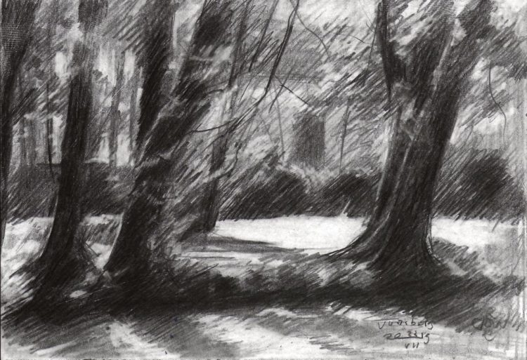impressionistic treescape graphite pencil drawing