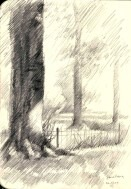 impressionistic treescape graphite pencil sketch thumbnail