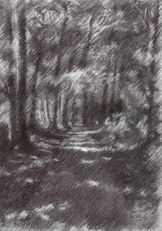 impressionistich treescape graphite pencil drawing