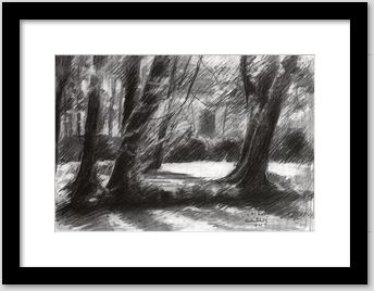 framing example of an impressionistic treescape graphite pencil drawing
