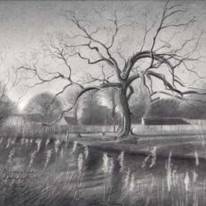 impressionist treescape graphite pencil drawing
