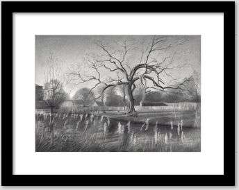 impressionist treescape graphite pencil drawing framing example